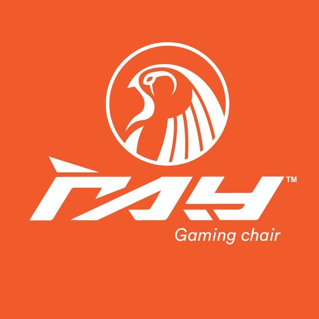 Raygaming Chair